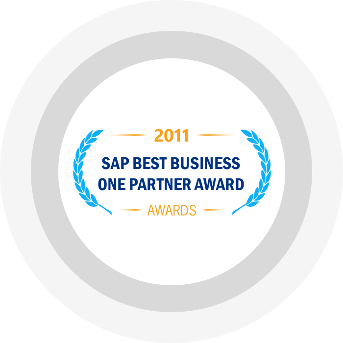 SAP Business One Partner of the Year 2011