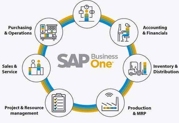 Understanding SAP Business One Modules